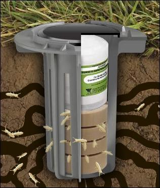 Termite Bait Stations Canton Georgia Termite Amp Pest Control